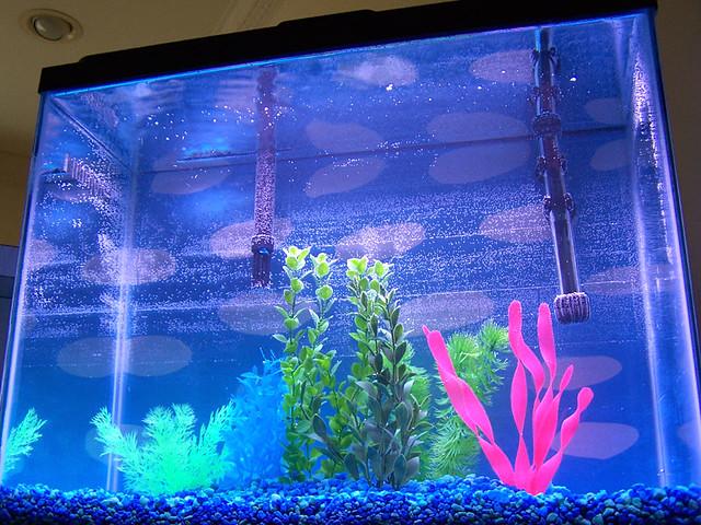 75 Gallon Aquarium Filter