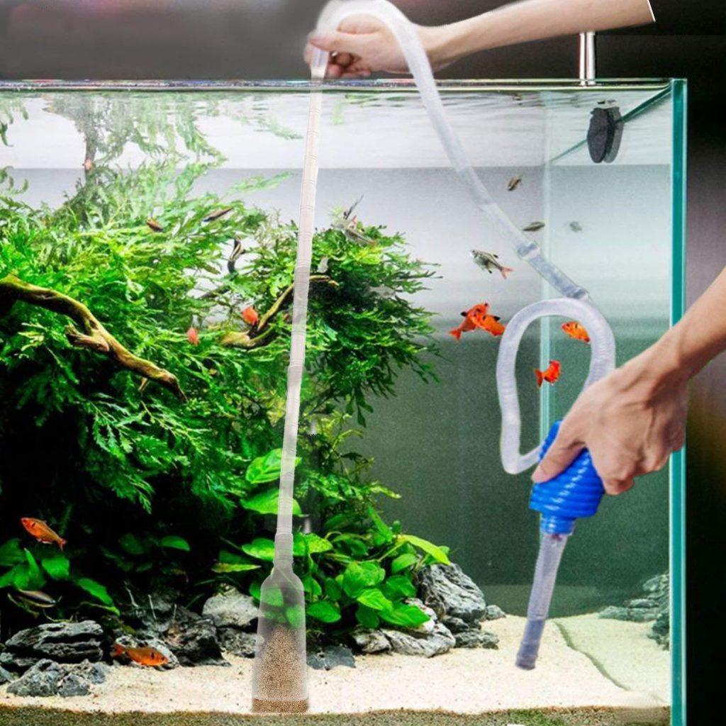cleaning fishtank